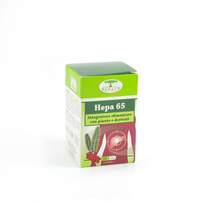 hepa 65
