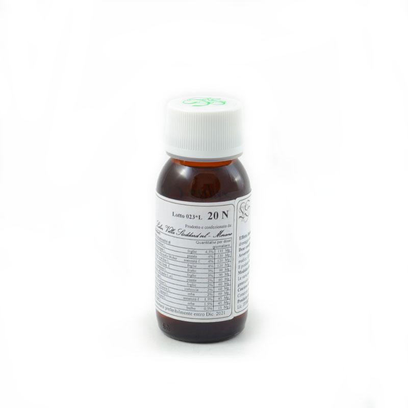 carpinus LVS20N